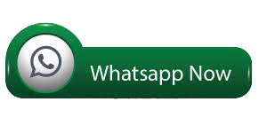OE Business WhatsApp